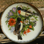 Plate - Orioles 01A