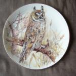 Plate - Owl 01A